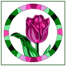 Tuckborough Tulip